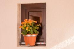 http://www.vario-fix.de/images/VFSO/Vario-Fix-Solo-I-Blumentopf-Halterung-Haltebügel-mit-Blumentopf-Beispiel.jpg