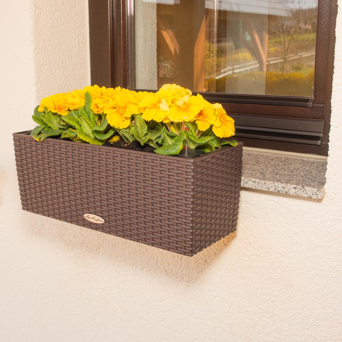 Vario-Fix-Lechuza-vor-der-Fensterbank-Halter-komplett